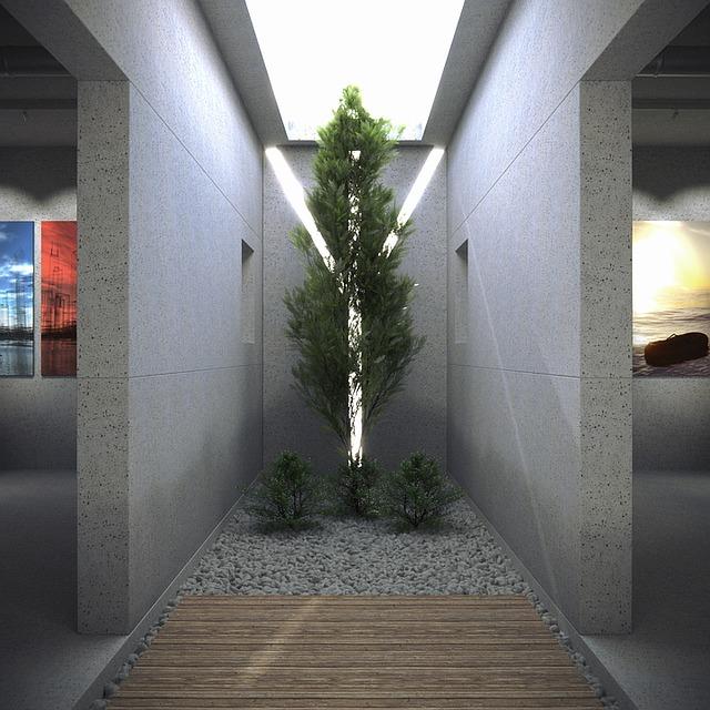 סקייליט – האור החודר פנימה